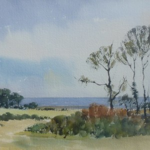 X (SOLD) Wiveton Downs