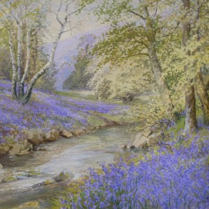 X (SOLD) Bluebells by a Woodland Stream