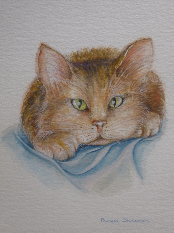 Cat Collection: Paws (SOLD)