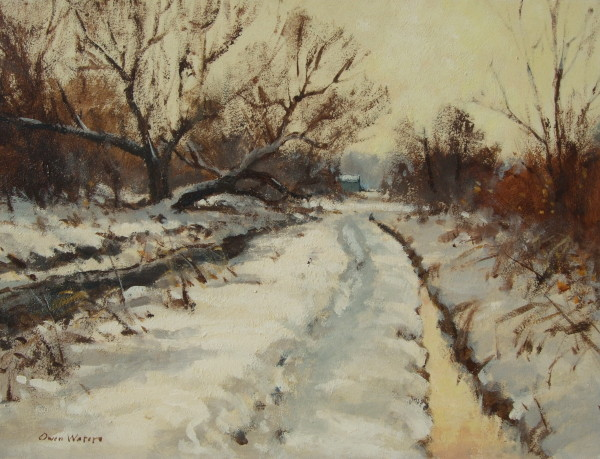 X68 (SOLD) The Marsh Path, Acle, In Winter 1974