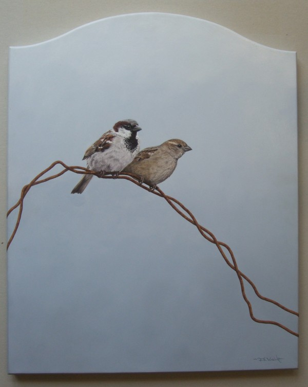 Oil on Panel – House Sparrows