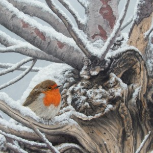 X (SOLD) Robin, Taking Shelter