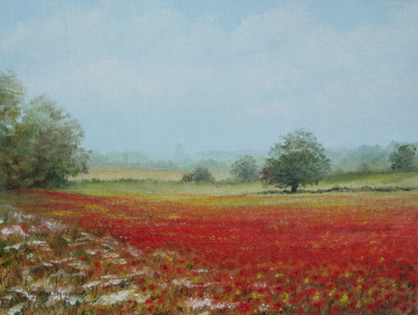 X (SOLD) Scenes – Poppies at Salhouse