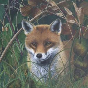 X (SOLD) Watching (Fox)