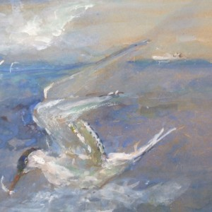 X36 (SOLD) Diving for Food (The Common Tern)