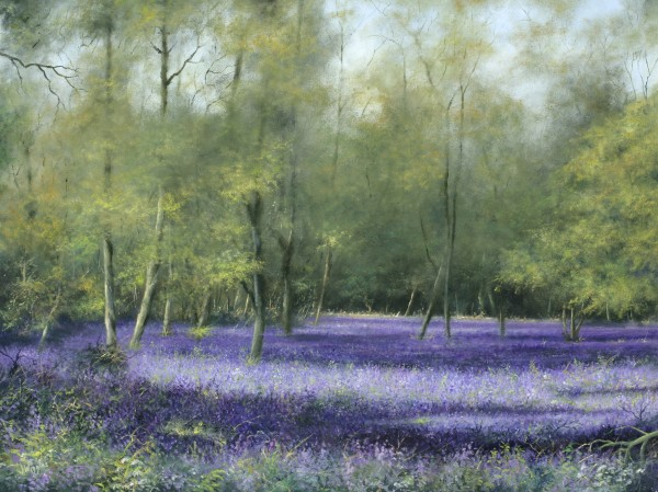 X09 (SOLD) Bluebell