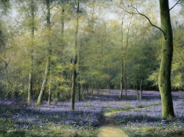 X06 (SOLD) Bluebell