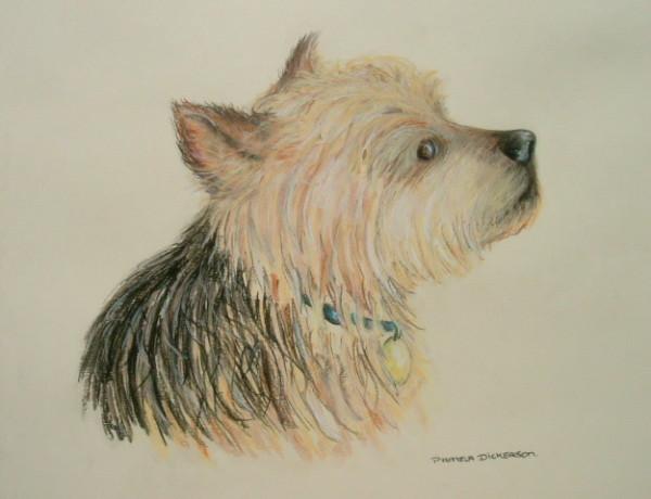Dog Commission in Pastel (Benji) Yorkshire Terrier (SOLD)