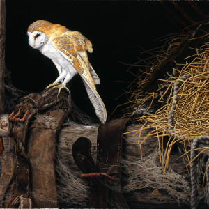 "Signed Limited Print – ""Barn Owl"" (In the Hayloft) Published exclusively by Tudor Galleries"