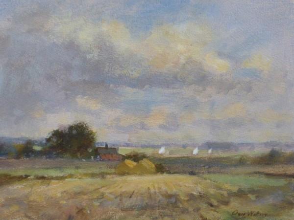 X64 (SOLD) Halvergate Marshes