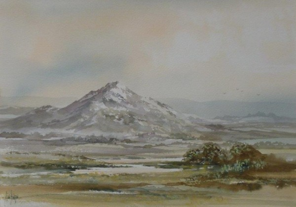 Welsh Mountains (4)