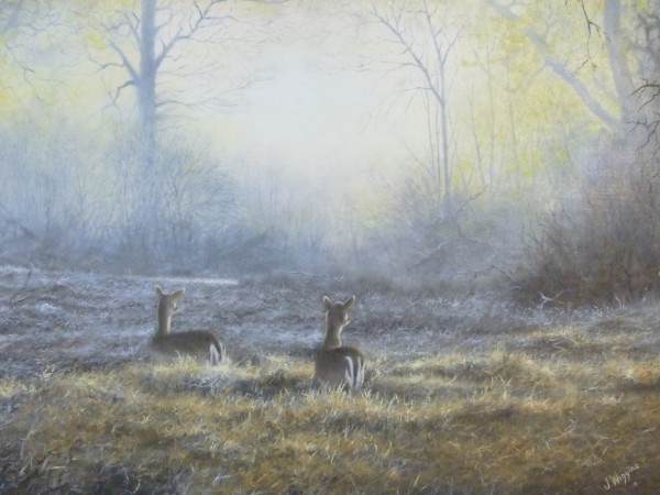 X20 (SOLD) Early Risers 1