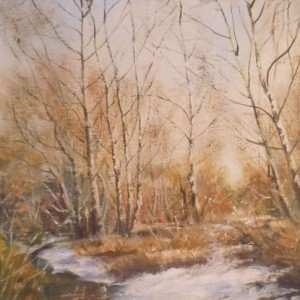 Winter Birches by a stream