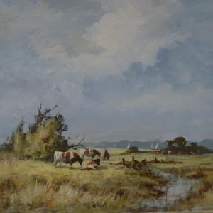 Grazing Cattle, Halvergate Marshes, Norfolk