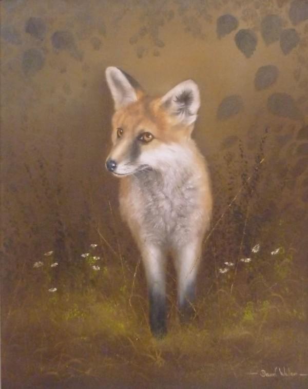 X (SOLD) Fox