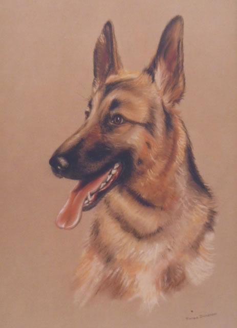 Dog Commission in Pastel (Alsation) (SOLD)