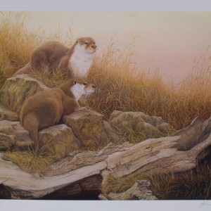 "Signed Limited Print – ""Ever Alert"" (Otters)"