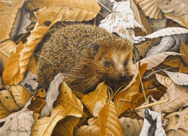 X (SOLD) Amongst the Leaves (Hedgehog)
