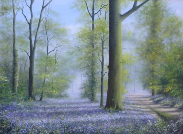 X33 (SOLD) Bluebellwood – Spring Carpet