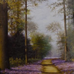 X13 (SOLD) Bluebell Walk