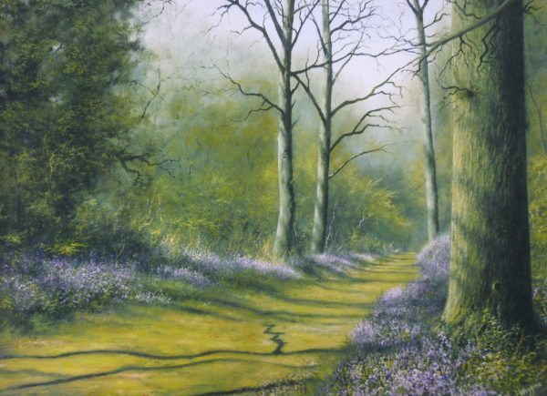 X14 (SOLD) Bluebell – Spring Shadows no1