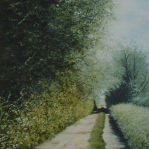 X24 (SOLD) Lane at Oby no1