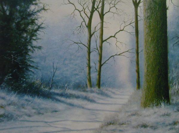 X29 (SOLD) Winter Shadows no1