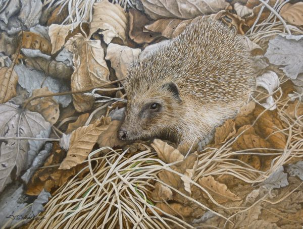 X (SOLD) Rooting Around (Hedgehog)