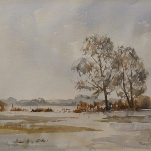 Flooded Meadows, Mountsorrel, Leicestershire