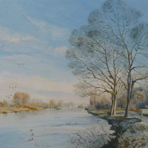 Winter Sunshine, Whitlingham