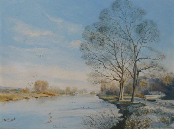 Winter Sunshine, Whitlingham