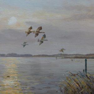 X (SOLD) Evening Flight – Broadland