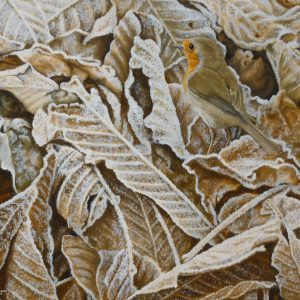 X (SOLD) Morning Frost (Robin)