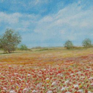 Scenes – Poppyland, Norfolk